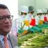 Ministro Juan Manuel Benites dijo que se viene conversando con las autoridades norteamericanas para establecer medidas que permitan mejores condiciones de competitividad a nuestros productos como espárragos y arándanos, entre otros.